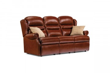 Ashford Small Leather Fixed 3-Seater Settee