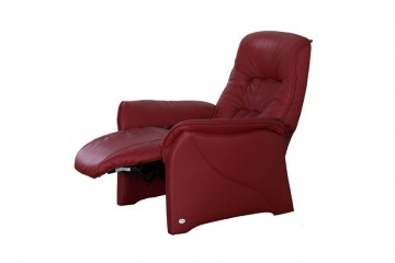 Rhine Recliner Chair